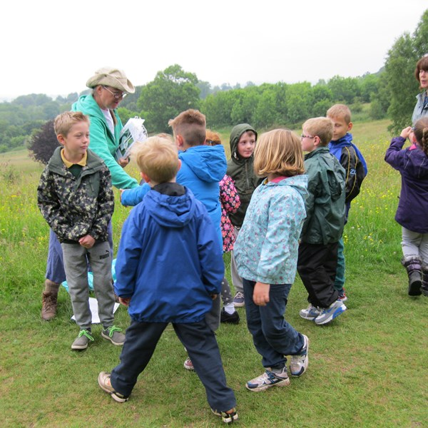 Wildplay fun - Bioblitz 2015