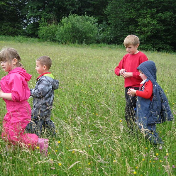 Bug hunting at the Bioblitz 2015