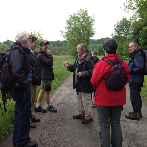 Guided walk on the Downs