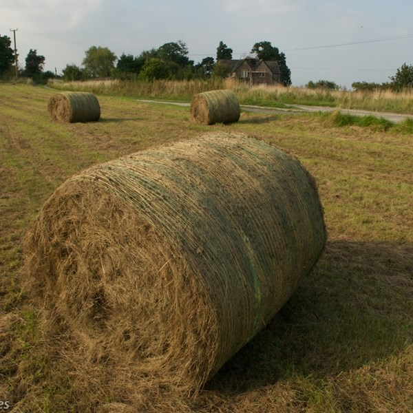 Hay bale by EBJ